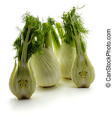 Fresh fennel isolated on white - Fresh florence fennel ...