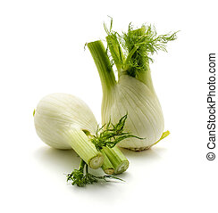 Fresh fennel isolated on white - Two florence fennel ...