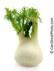 fresh fennel over white background