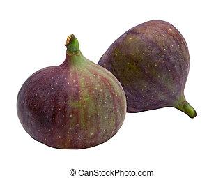 Fresh fig fruit