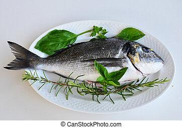 Fresh fish 2
