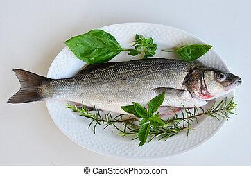 Fresh fish 3