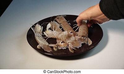 Fresh fish crustaceans - Fresh fish family crustaceans...