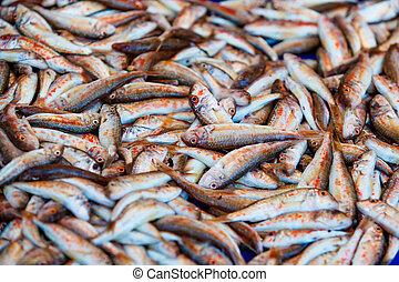 Fresh fish for sale on fish market. Red mullets. Mullus barbatus