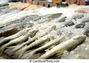 fish frozen in ice at market
