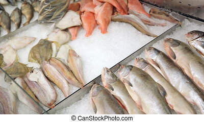 Fresh fish in grocery store