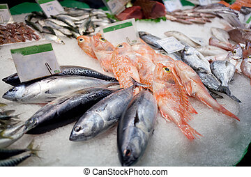 Fresh fish lies on a counter of shop in the fish market