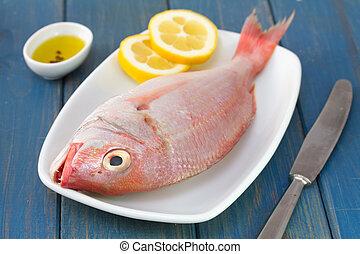fresh fish on dish