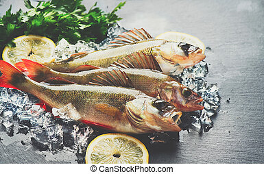 Fresh fish on ice with aromatic herbs, spices, salt. Raw perches on dark slate tray