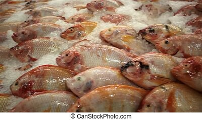 Fresh fish tilapia on ice in the market, Thailand