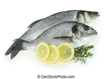 Fresh fishes with lemon and herbs isolated on white