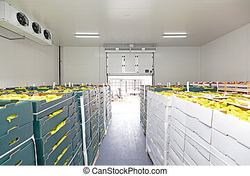 Peppers Vegetables in Boxes in Distribution Warehouse