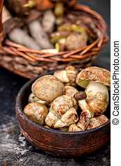 Fresh forest mushrooms in a bowl