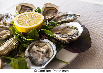 oysters - fresh French appetizer oysters on ice with lemon, ...