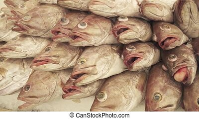 Fresh frozen fish on the counter in supermarket stock...