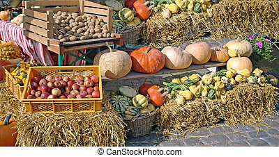 market - fresh fruit and veggies from the market
