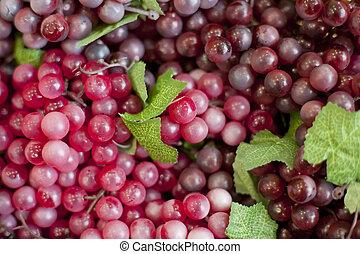 Fresh fruit, grapes