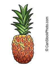 Fresh fruit nutrition healthy hand drawn