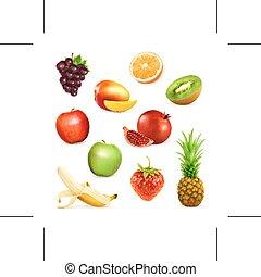 fresh fruits illustration - Set with fresh fruits, isolated...