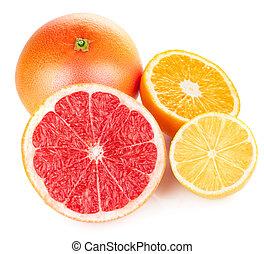 fresh fruits orange lemon grapefruit in cut