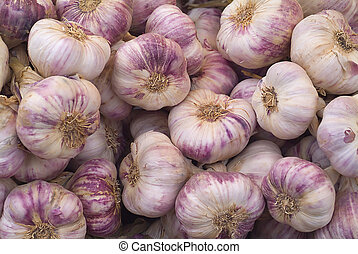 Fresh garlic - Close-up of cloves of fresh purple garlic