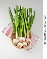fresh garlic in basket