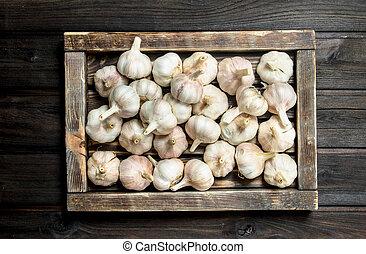 Fresh garlic in the tray.