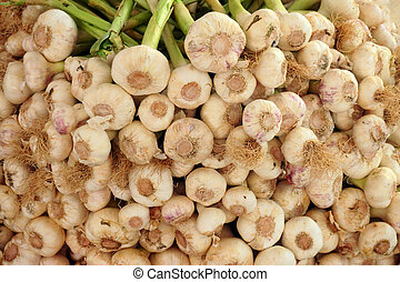 garlic on the market