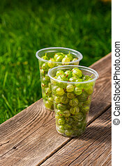 fresh gooseberry in plastic containers on the table