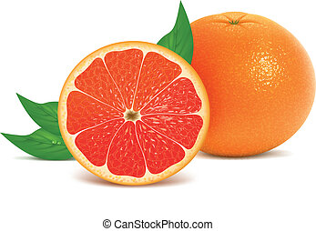 Fresh grapefruits with leaves