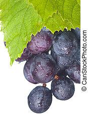 Fresh grapes and green leaf