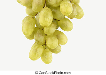 fresh grapes isolated