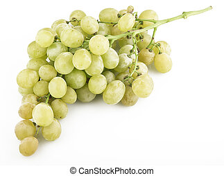 fresh grapes with drops close up