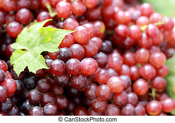 Fresh grapes with green leaves on a background.
