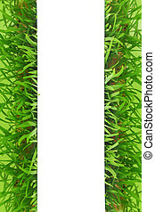 Fresh grass blank white banner with green background