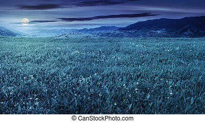 fresh grass meadow near the mountains at night - rural...