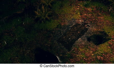 Fresh grave in rainy night forest top view 4K - Overhead...