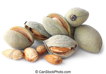 Fresh green almonds