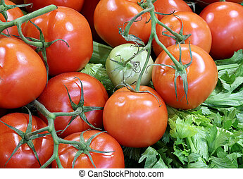 green and red tomatoes for sale in the greengrocer shop