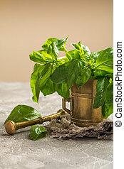 Fresh green basil in old metal mortar