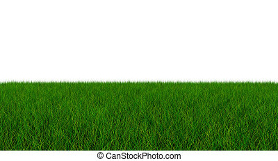 Fresh Green Blade of Grass - Isolated On White Background - 3D Illustration