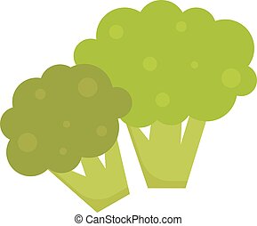 Fresh green broccoli isolated on white background vegetarian, raw, healthy food vector.