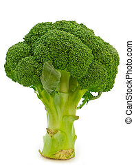 fresh green broccoli over the white background