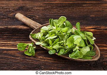Fresh green corn salad. - Fresh green field salad on old...