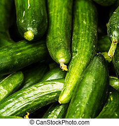 Fresh green cucumber collection on market close up.  Cucumber  b