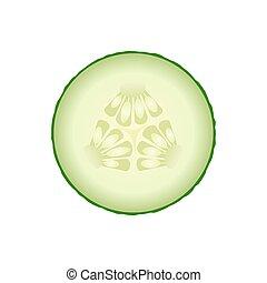 Fresh green cucumber slice isolated on white background....