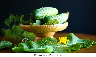 fresh green cucumbers on a wooden table