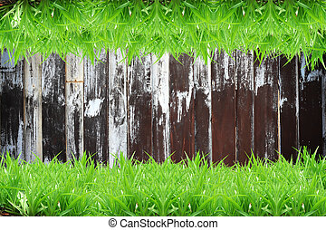 Fresh green grass on Wood background