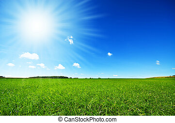fresh green grass with bright blue sky and sunburst ...