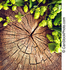 Fresh, green hop branch on cracked wooden background. Brewing concept